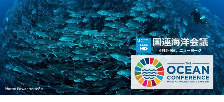 国連海洋会議 | 国連広報センター