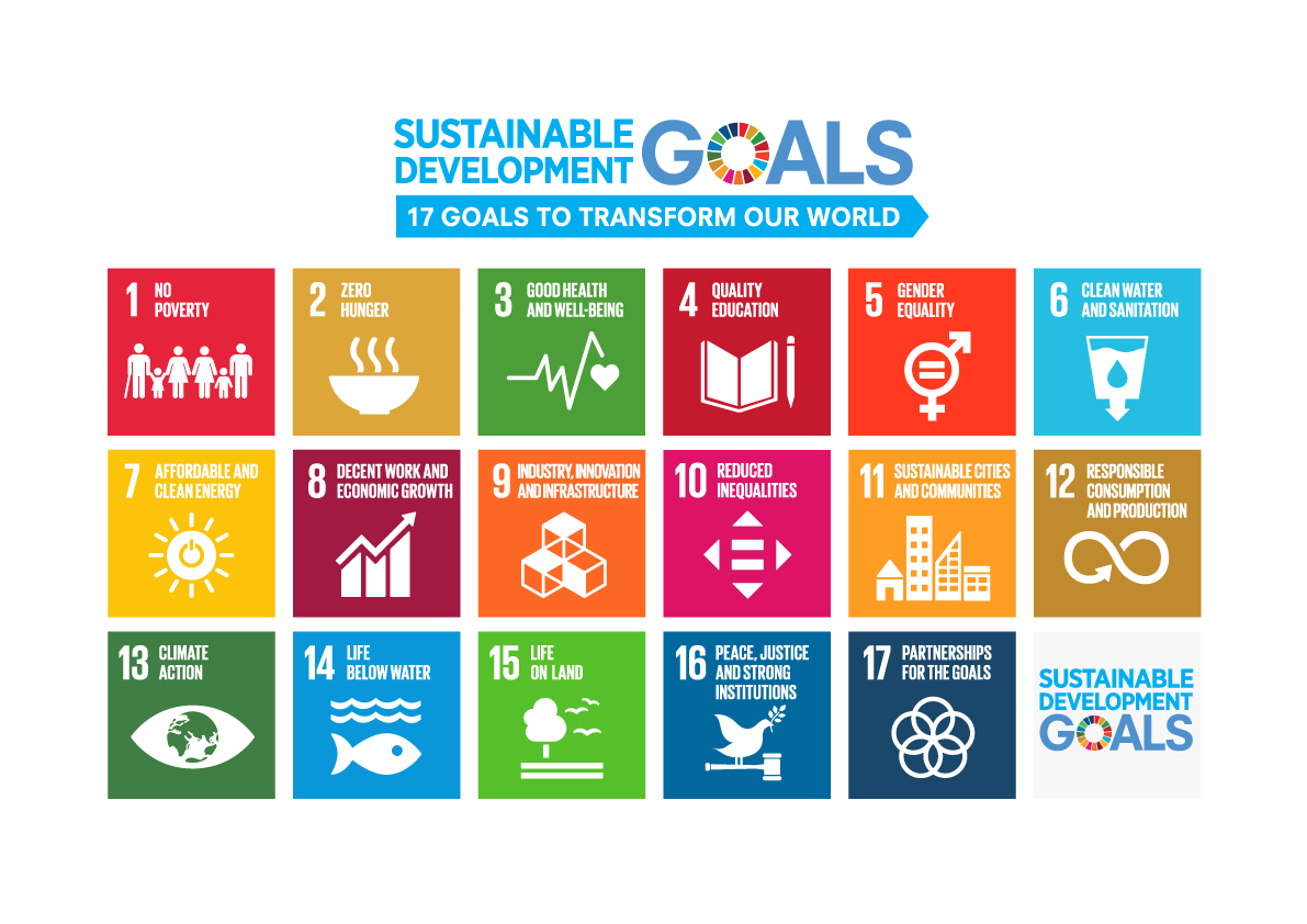 Image result for SDGs ロゴ